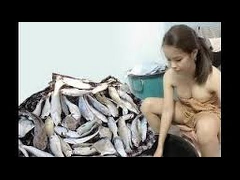 from Neil nude girls with fishes