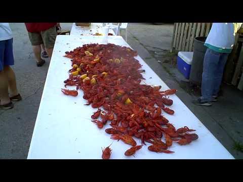 Free Crawfish Boil 6-5-09 Baton Rouge, Louisiana