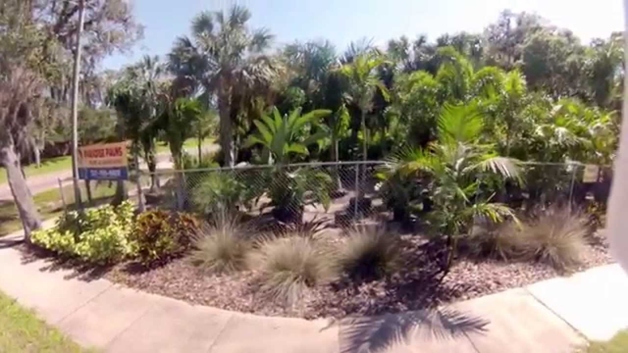 Paradise Palms Landscaping Fl Our Nursery Youtube