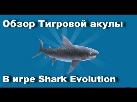 Игру Симулятор Белой Акулы