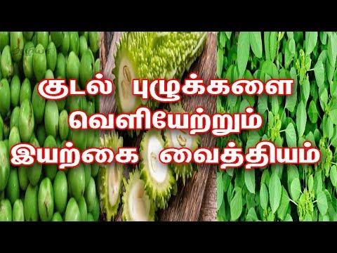 குடல் புழுக்கள்  நீங்க |  Home Remedies For Intestinal Worms In Tamil