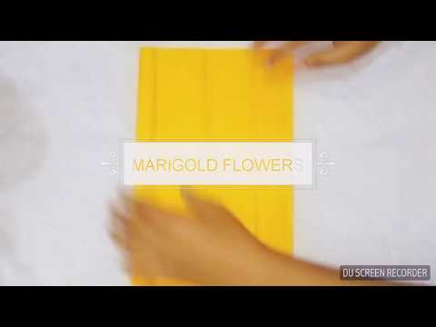 How to make marigold flowers with paper