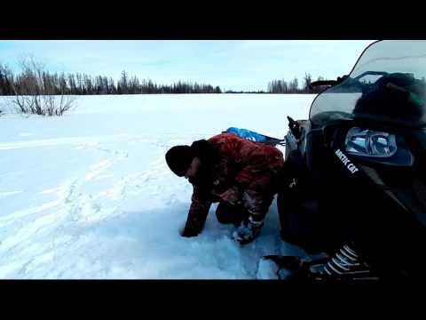 рыбалка на сига в свердловской области