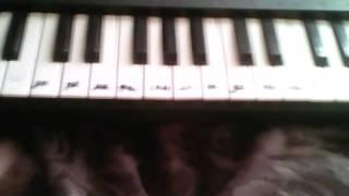 Учимся играть по нотам В лесу родилась елочка на синтезаторе