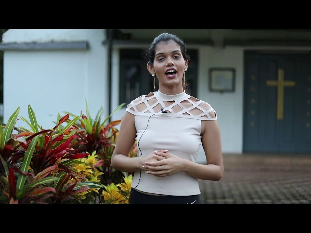 Amanda Vas   Miss Golden Heart   India's Miss TGPC Season-7
