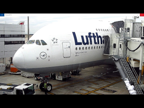Amazing flight on United Boeing 777-200ER Houston to Amsterdam + Leiden & Rotterdam