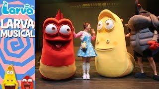 official larva musical - oh my larva - special videos