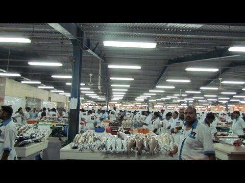 Waterfront Market: Dubai Deira Fish Market