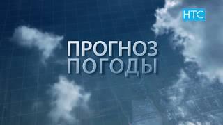 Прогноз погоды в Кыргызстане на 12.07.19 / НТС