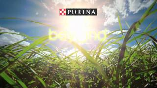 """Purina """"We Believe"""" Commercial"""