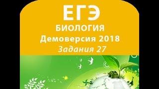 Задания 27 Демовариант 2018 ЕГЭ по биологии
