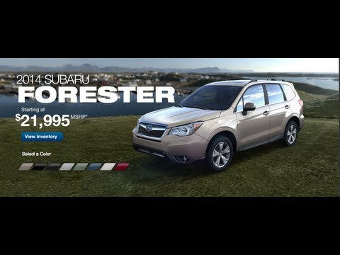 2014 subaru forester comparison premium limited touring 2 0 xt. Black Bedroom Furniture Sets. Home Design Ideas