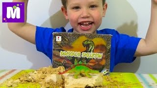 Раскопки динозавра набор ищем динозавра игрушка распаковка set for dinosaur excavation kit