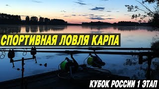 СПОРТИВНАЯ ЛОВЛЯ КАРПА. I Этап Кубка России. CarpTravel Team.