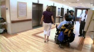 Spinal Cord Injury: Low Cervical Level