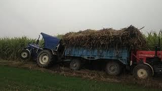 farmtrac 60 epi v sawraj 855 ट्रॉली फस्ती रही ट्रैक्टर निकालते रहे निकले गई या पलटे गी देखो
