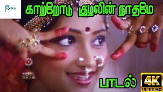 Kaatrodu Kuzhalin  Naathame   காற்றோடு குழலின் நாதமே    Chithra   Melody H D Song