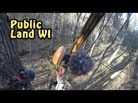 Bow Hunting The Hills In WI Public