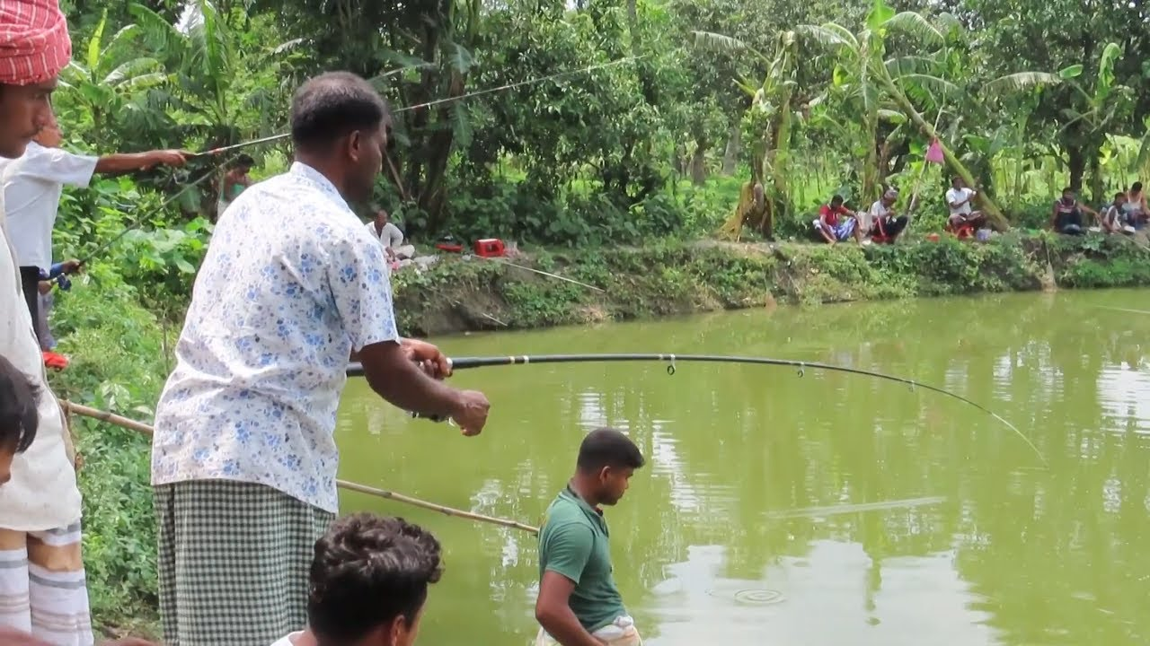 An amateur fish hunter of villages catching a lot of mrigal fish by fishing rod