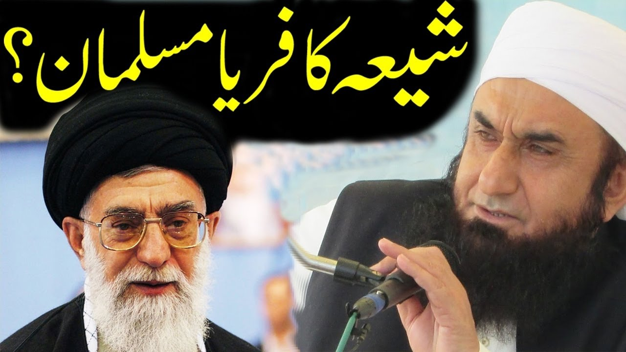three main types muslims shia sunni and wahabi 322 zikri 323 nation of islam 324 moorish science 325 submitters explains it in more detail now to answer your question in more detail: 1 there are many reasons for the differences between sunni and shia, the most notable being on whom either group felt should have led the muslims.