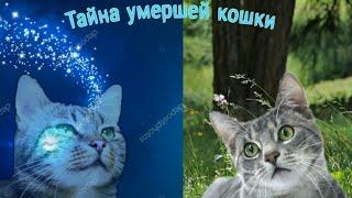 """Коты-Воители 3 серия """"Тайна умершей кошки"""""""
