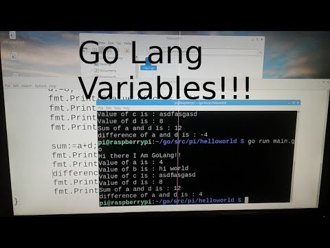Go Lang Tutorial #2 : Variables thumbnail