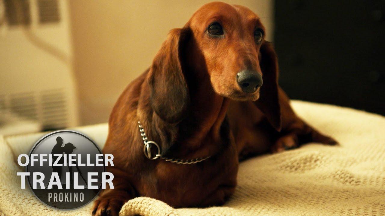 WIENER DOG | Offizieller HD Trailer | Deutsch German ...