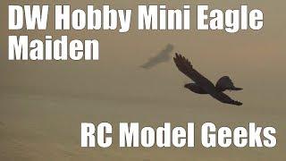 DW Hobby Mini Eagle Maiden RC Model Geeks