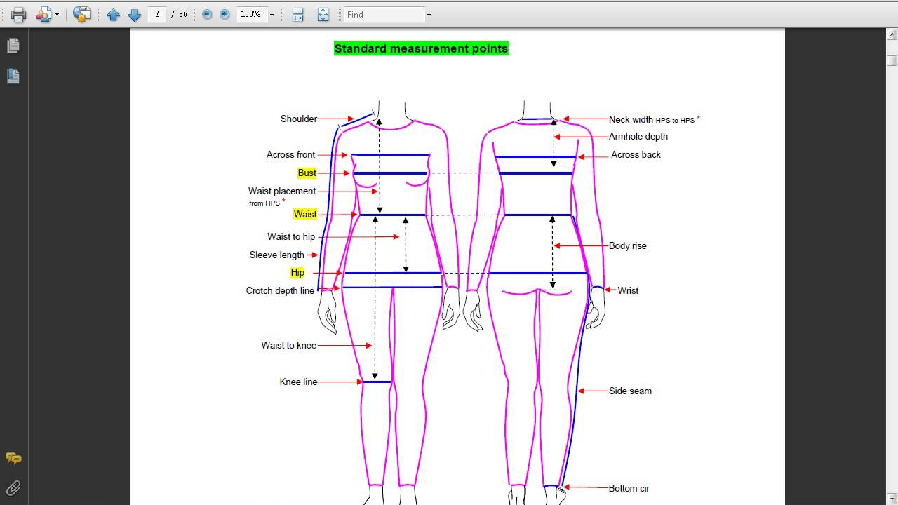 detailed  human body of standard measurements points