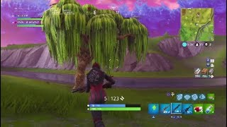 Fortine duos with YDG_Buzzgod