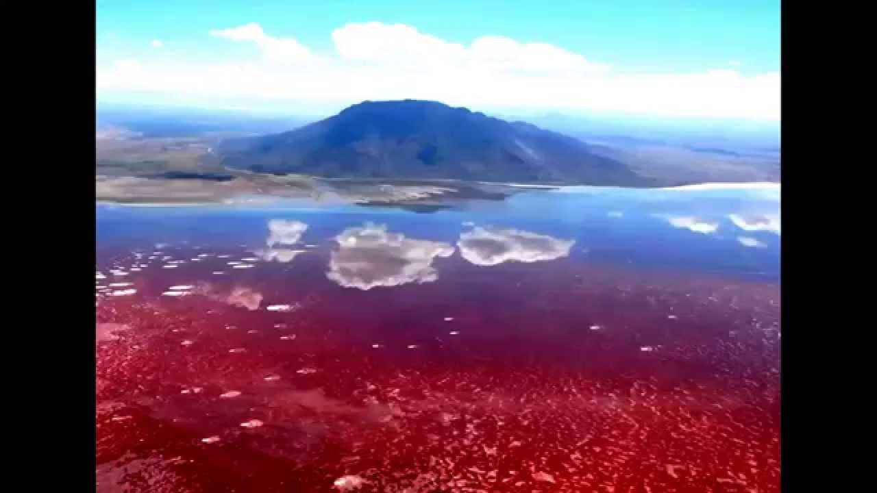 Natural wonders lake natron tanzania youtube