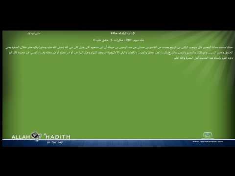 Sunan Abu Dawood Arabic سنن ابوداؤد 031 کتاب ارتداء حلقة