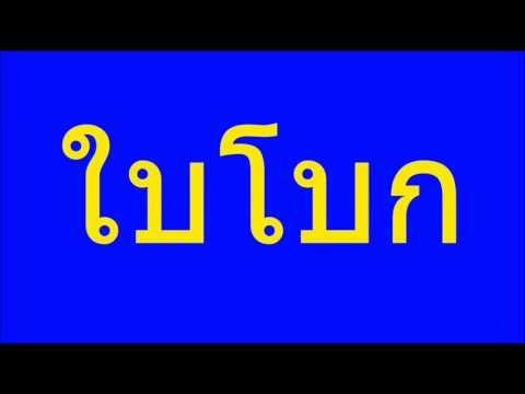คำศัพท์ภาษาพาที ป ๑ บทที่ ๑ ใบโบก ใบบัว