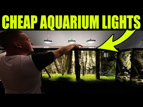 CHEAP Aquarium Lights - For Fish Tank Racks