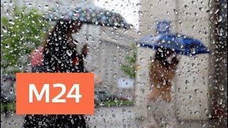 """""""Утро"""": атмосферное давление вернется к нормальным значениям 27 апреля - Москва 24"""