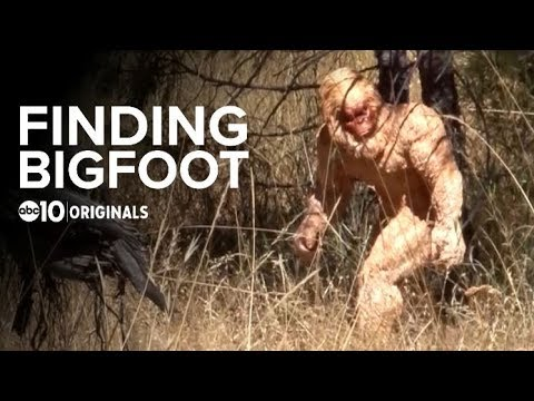 Bigfoot Investigator's Sasquatch Hunting Van | Bartell's Backroads