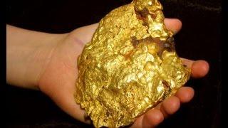 ALASKA GOLD !!!! The Rush is On !   ask Jeff Williams
