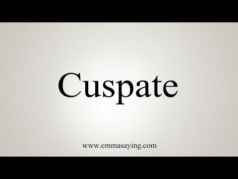 How To Pronounce Cuspate