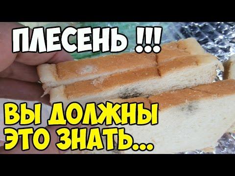 Николай Даников. Целебная сода