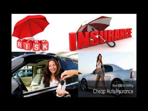 Colorado Springs Auto Insurance || Car Insurance in Denver Colorado