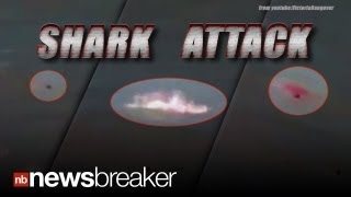 shark attack drowning teen attacked by shark moments before rescue caught on tape