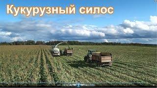 Колхозный Тест-Драйв 2019 | Заготавливаем кукурузный силос