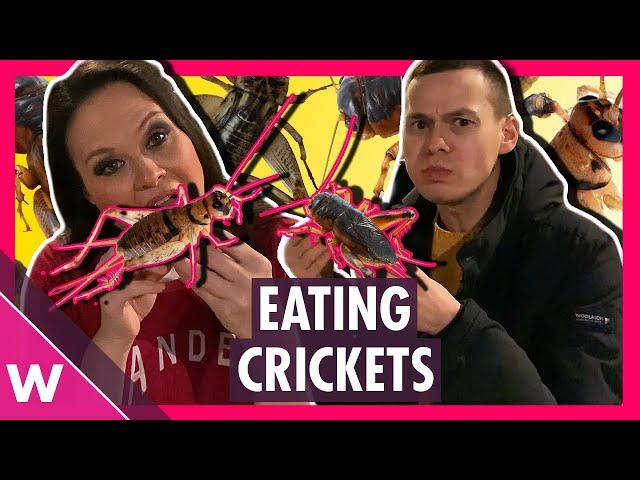 We ate CRICKETS in Rotterdam! Eurovision 2020 travel muckbang 🇳🇱