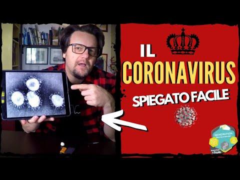 Il Coronavirus spiegato facile //Come funziona, come infetta, dove possiamo colpirlo.