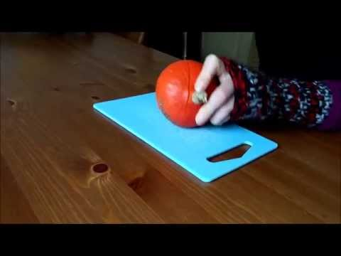 Urban vegetable garden: EPIC(ally funny) pumpkin reveal and bonus pets