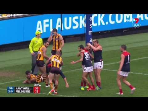 Round 11 AFL - Hawthorn v Melbourne Highlights