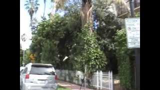 Case in affitto a Miami / Massimiliano Mlekus Cocchi