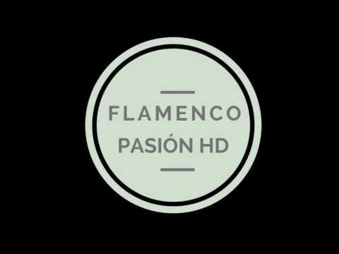 Sesion flamenca 2017