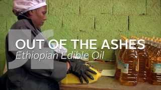 Edible oil value chain enhancement in Ethiopia