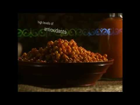 Seabuckthorn Superfood 160621